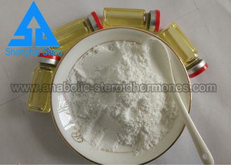China Sustanon 250 Powder Proviron Mesterolone Muscle Gain Steroid  for Adult supplier