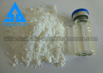 China 99% Assay Testosterone Bulk Powder Muscle Gain Steroid for Adult supplier