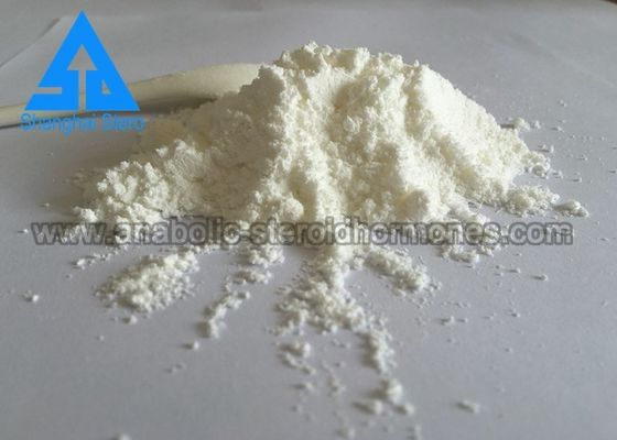 China GMP Standard Testosterone Enanthate Natural Anabolic Steroids CAS 315-37-7 distributor